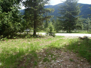 Beautiful Acreage for sale in the Slocan Valley