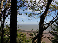 WATERFRONT BAY OF FUNDY!