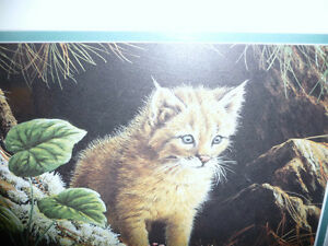 "Marc Barrie ""New World-Lynx Kitten"" Limited Edition, Signed and Stratford Kitchener Area image 3"