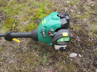 """Weed Eater gas-powered 25 cc engine, 16"""" cut"""