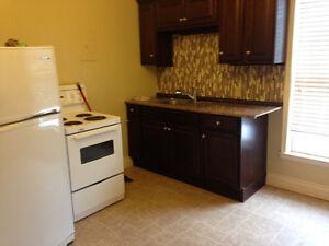 Downtown 1 bedroom apt $575-$650