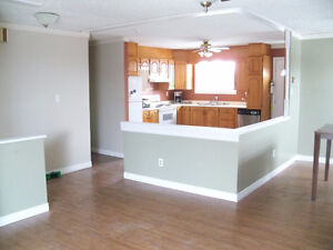 Handyman Services - Quality guaranteed. Affordable prices St. John's Newfoundland image 3