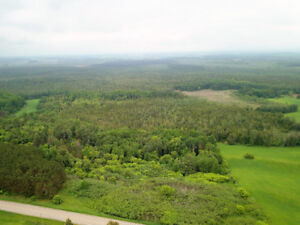 75 Acres for sale near Westmeath Lookout