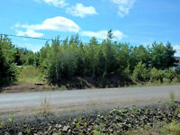 Treed Building Lot on Saffron Drive Irishtown! Quiet Street