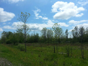 3 ACRES VACANT LAND FORT ERIE