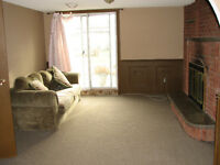 Walk-out Basement Apartment for Rent in Brampton