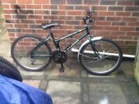 Raleigh Genesis mountain bike
