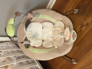 Fisher Price Deluxe Snuggabunny Bouncer