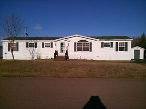 ****Rent or Rent to own**** - Pine Tree!!