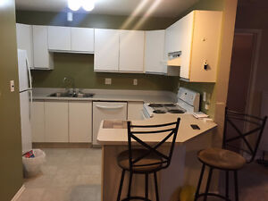 2 Bedroom, 2 Bathroom, 2 Parking Stalls - Downtown Edmonton Edmonton Area image 10