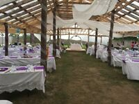 Wedding venue and decorations