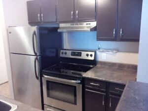 Renovated 1 bdrm apt near U of S, in suite laundry, Sutherland