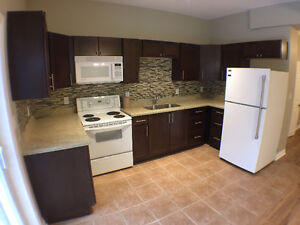 Totally Renovated 2 bdrm Apt-Queen St S
