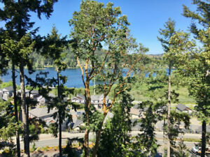$1,980 STUNNING LAKE VIEW CONDO, 2 Bedrooms 2 Bathrooms - June 1