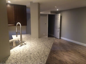 Renovated 2 bedroom basement suite Pet friendly fenced back yard