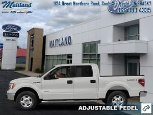 2014 Ford F-150 FX4   -