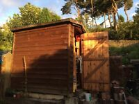 Shed 6 x 4
