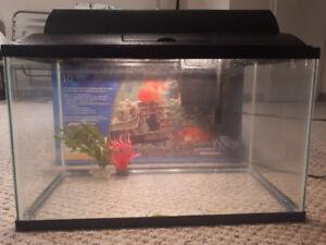 10 Gallon Fish Tank for Sale!