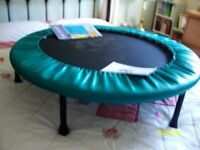 PT Exercise Bouncer, for home use. Excellent condition includes manual and chart