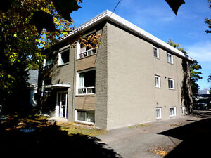 COMPLETELY RENOVATED 1 BEDROOM NEAR CITY HOSPITAL AND UNIVERSITY