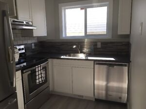 Beautiful 2 Bedroom Lower Level Suite in High River