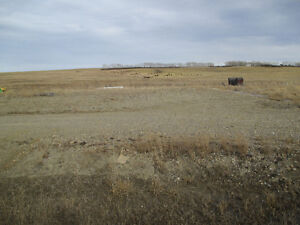 6- .47 acre Lots in Madden for Sale priced $69,000-$125,000