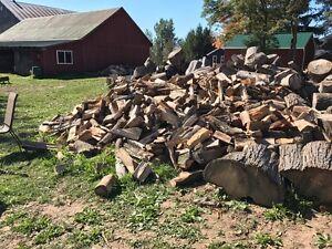 Premium Firewood for Sale Kitchener / Waterloo Kitchener Area image 6