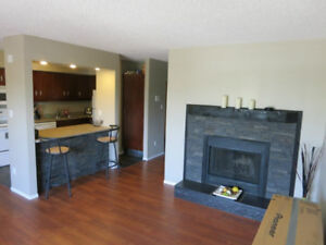 One Bedroom Adult Building for Rent