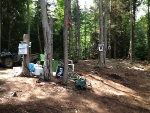 Hunting lot in algonquin highlands for sale Hunt camp W permit Peterborough Peterborough Area image 3