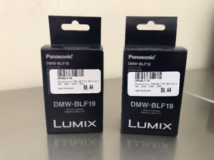 Piles Panasonic DMW-BLF19 Batteries