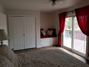 1 Bedroom  Apartment - Short Term and Long Term Rental