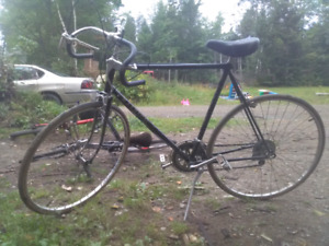 Two 10 speed bikes for sale