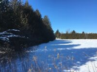 Build Your Dream Home in Caledon- One Acre Lots for Sale