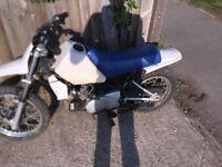 2 stroke pit bike