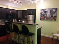 Springvalley, fully furnished condo