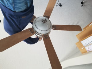 Ceiling fan local deals on electrical materials in edmonton ceiling fan aloadofball Image collections