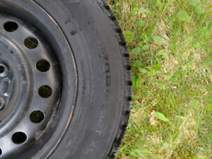Studded winter tires in great condition