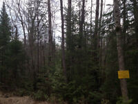 2 Acre lot for sale off of 169 / Monk Road close to Casino Rama