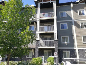 McKenzie Towne SE Calgary | 2011 built + Low Condo Fees