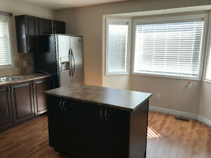 Beautiful 3 Bedrooms House for Rent in South Side Edmonton