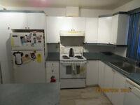 armoire de cuisine blanche, plus ilot