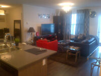 Room to Rent //Fully Furnished on South Ellerslie road.March 1st