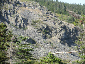46 CHIPMAN'S ROAD, SPANIARD'S BAY…REDUCED!! St. John's Newfoundland image 16