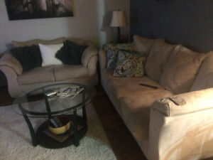 Couches (love seat and couch)