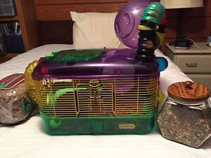 Free Hamster with cage