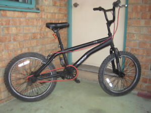 20'' BIKE SIMS EVIL FREE STYLE with pegs on rear wheel