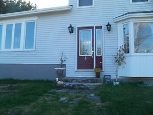 Handyman Services - Quality guaranteed. Affordable prices St. John's Newfoundland image 1