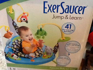 Evenflo Exersaucer Jump and Learn