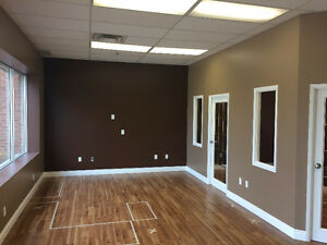Painter -- Excellent work for Affordable prices. Kitchener / Waterloo Kitchener Area image 6