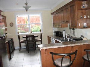 Modern Fully Equipped and Furnished Downtown Home